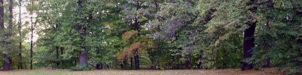 Es ist Herbst! - Nutzen Sie unsere Topangebote im Preisvergleich Ihres ONLINE-KAUFHAUSES auf www.homeback.de!