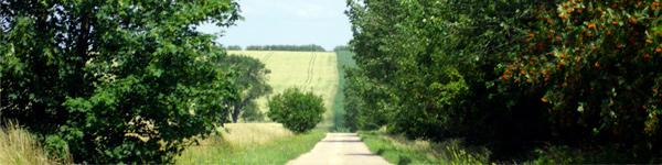 Es ist Sommer! - Nutzen Sie unsere Topangebote im Preisvergleich Ihres ONLINE-KAUFHAUSES auf www.homeback.de!